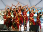 Reston Multicultural Festival: a celebration of diversity and community spirit
